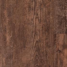 VGW51T  Aged Kauri